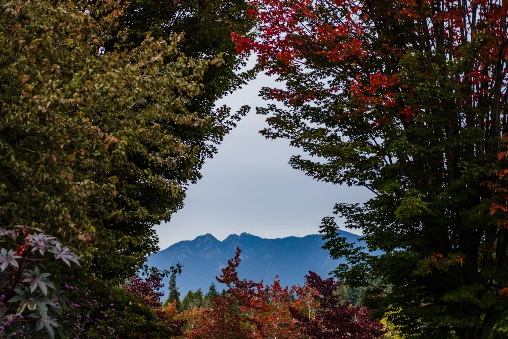 usa-canada-travel-photography-25